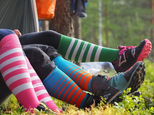 Suomen metsät ovat korvaamattomia – vastuullisuus on Jukolan kantava voima