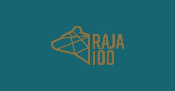 Rajavartiolaitoksen 100-vuotisjuhlailmeen suunnittelu ja yrityksen ilmeen uudistus